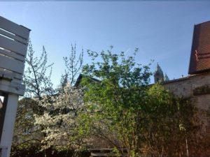 spring-blog-post